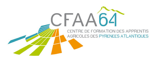 CFA ADAPSSA ITS PIERRE BOURDIEU